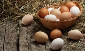 Сколько стоит десяток яиц?