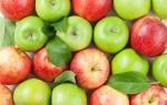 Сколько стоит килограмм яблок?